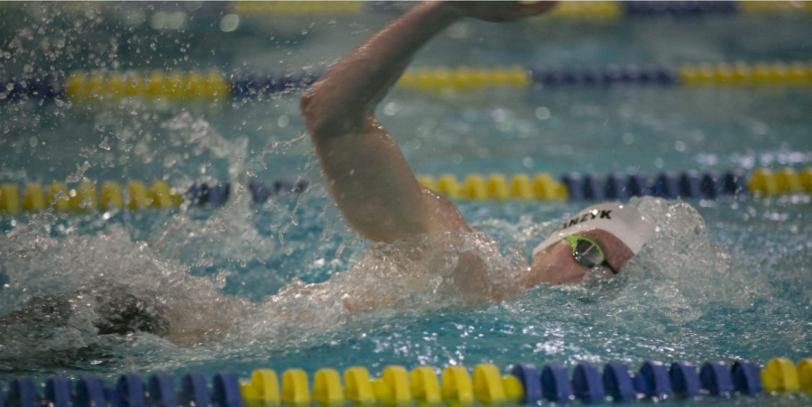 The Green Waves: An Overview of the Delbarton Swim Team's 2017-2018 Season