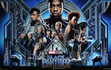 The Brilliance of Black Panther