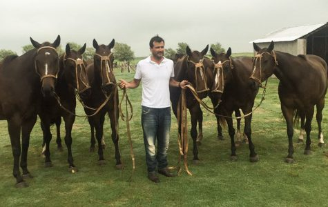 Adolfo Cambiaso: Polo Player and Revolutionary of Cloning