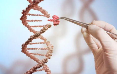 CRISPR: The Future of Gene Editing and its Societal Implications
