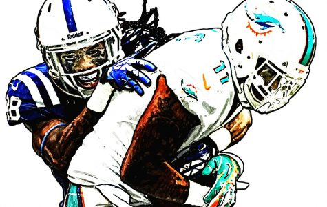 Fantasy Football Week 12 Preview: A Dolphin Worth Adding